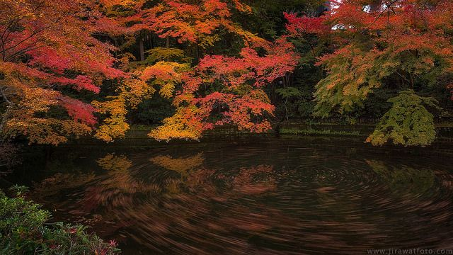 Maple pool  Beautiful scene of red leaves and pool with long exposure in Kiyomizu temple, Kyoto, Japan