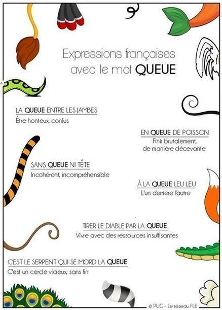 FLE Expressions et langage familier