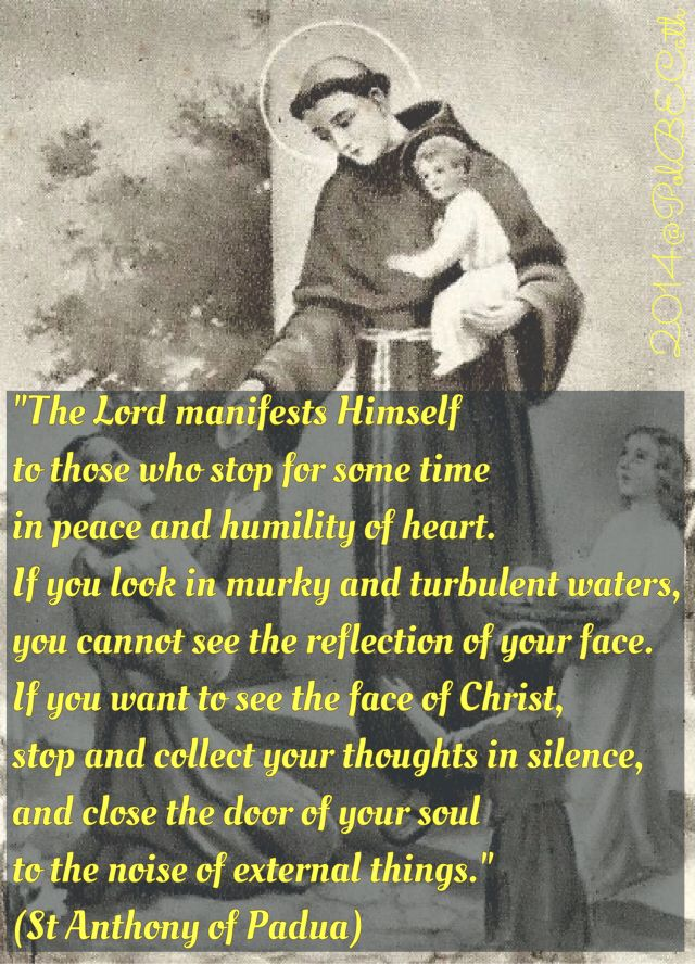 "St Anthony of Padua (or of Lisboa/Lisbon) - apropos the readings today: I Kings 19:8-16 - the ""still, small voice"" passage - see, I always knew St. Anthony was really a Carmelite at heart (just kidding - don't get mad at me Franciscans) - silence, prayer, sacrifice"