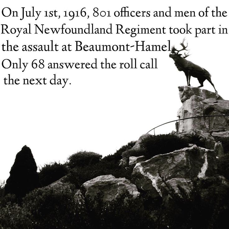 July 1 Newfoundland Regiment