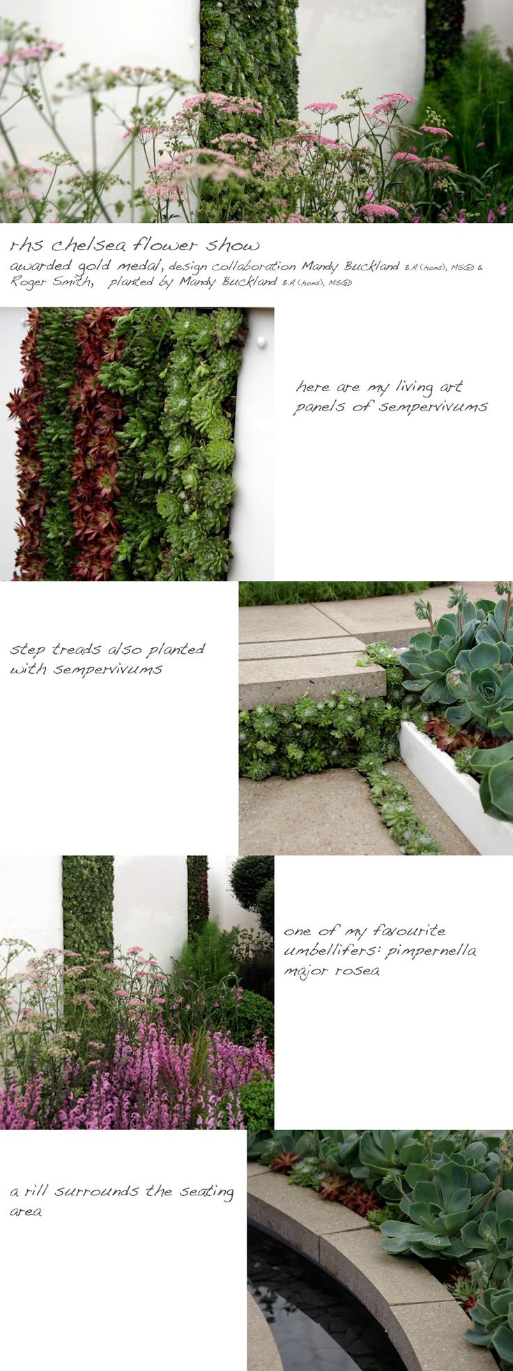 greencube garden and landscape design