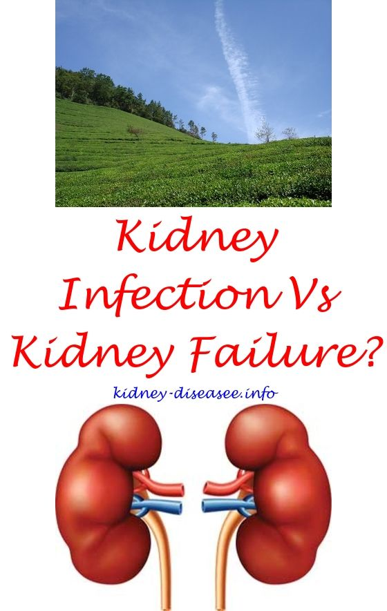 How To Make Your Kidneys Better What Can Cause Low Kidney Function