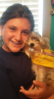 18 best dog days of summer images on pinterest dog days main get stuck into the smile philosophy nease and higginbotham orthodontics 2455 e main street spartanburg sc 29307 phone solutioingenieria Images