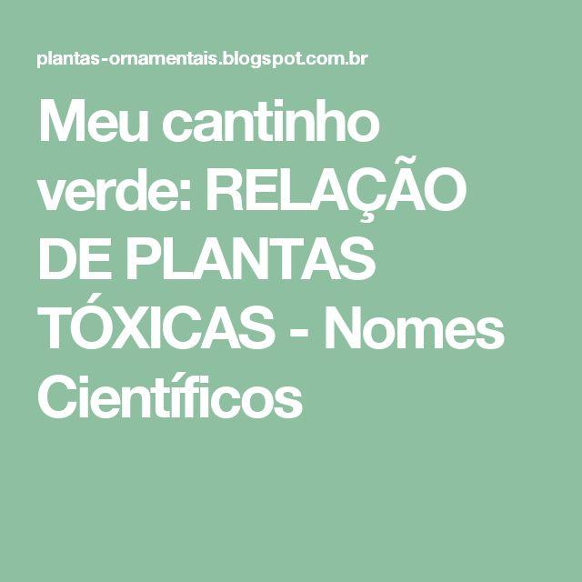 Meu cantinho verde: RELAÇÃO DE PLANTAS TÓXICAS - Nomes Científicos