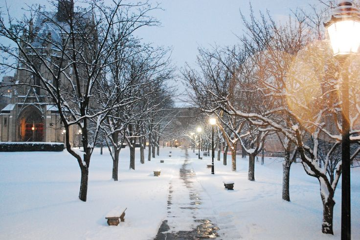 University of Pittsburgh, snow walk, night,