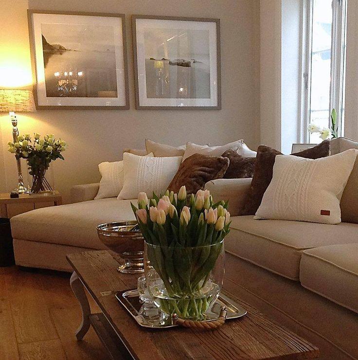 296 best Dnevni boravak images on Pinterest Living room ideas - beige couch living room
