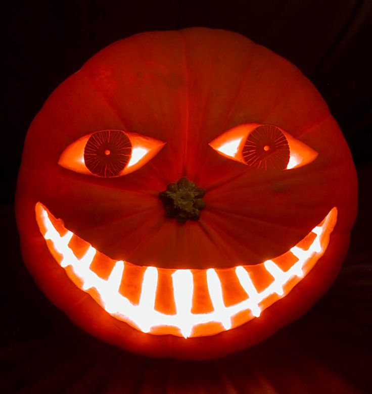 :): Pumpkin Art, Cute Animal, Funny Squirrel, Halloween Pumpkin, Pumpkin Decor, Pumpkin Carvings, Jack O' Lanterns, Pumpkin Design, Happy Halloween