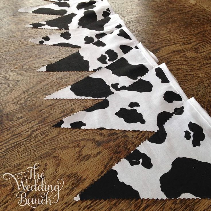 Cow Bunting in black & white :) It's a little bit country!!