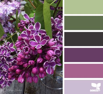 Design Seeds: flora tones - Lilacs! Lovely olive greens, lilac, orchid, pale mauve