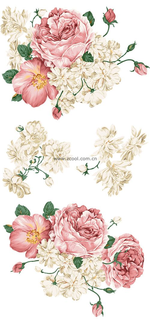 Beautiful hand drawn style peony flower PSD layered material