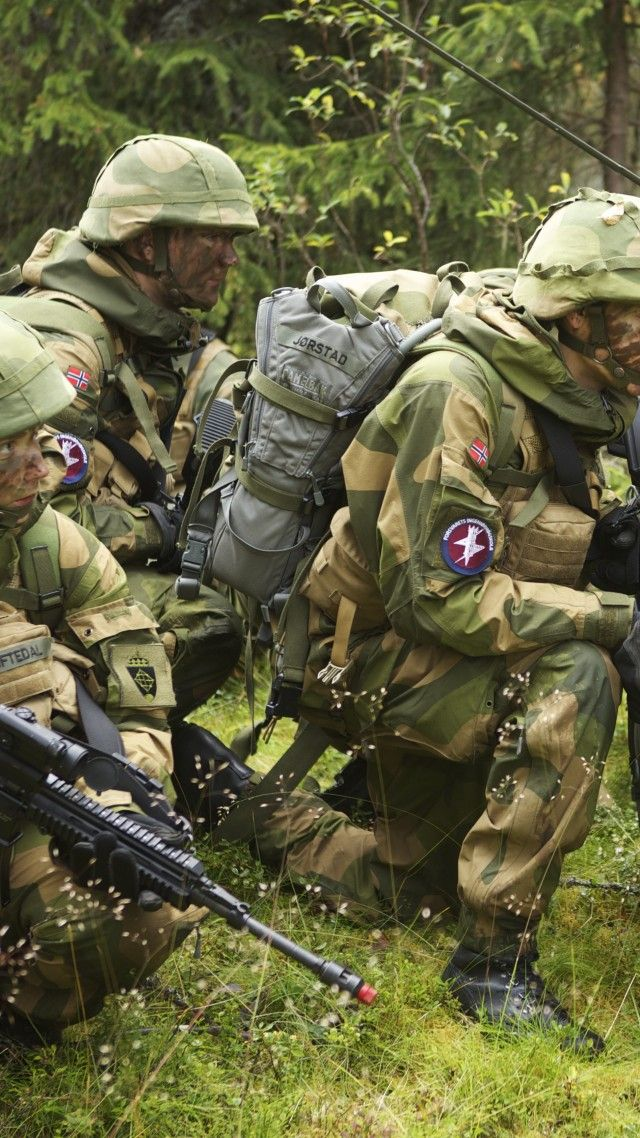 Norwegian Army, Norwegian Armed Forces, soldier, camo, mission, rifle, forest