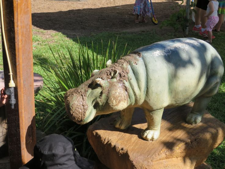 Owen our baby hippo
