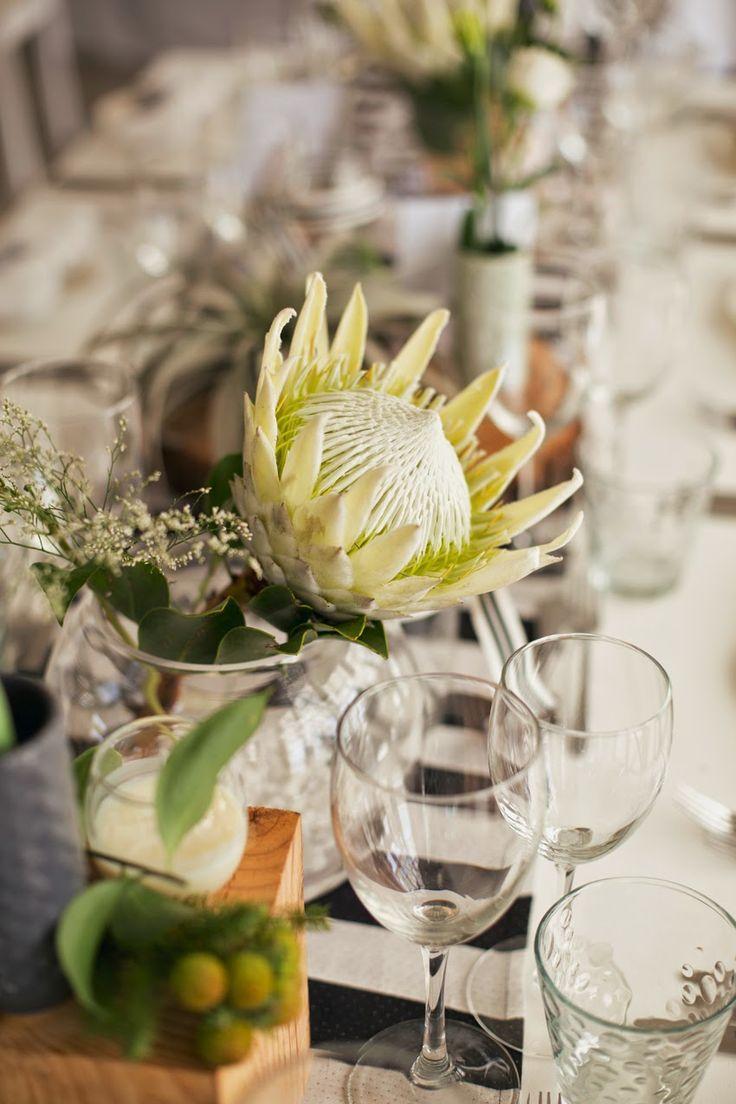 Jimmy & Valentine - Andre Sonnekus Photography - Eco-Chic Weddings www.andresonnekus.com www.ecochicweddings.co.za