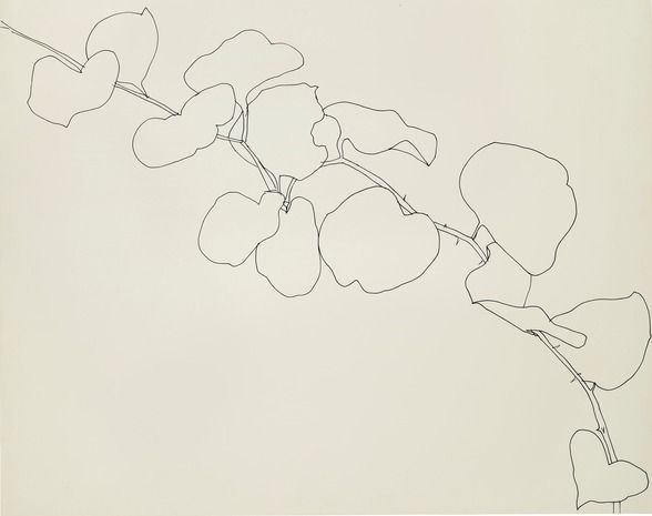 Ellsworth Kelly, Briar, 1961, ink on paper, 22 1/2 x 28 1/2 in. Wadsworth Atheneum Museum of Art, Hartford, Conn. © Ellsworth Kelly. Photograph Courtesy: The Metropolitan Museum of Art.