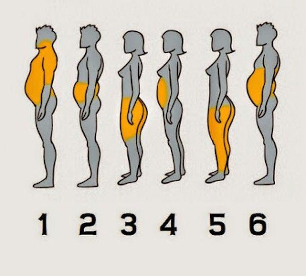 La science a examiné et prouvé et défini 6 types d'obésité causées par différents facteurs. Lisez cet article et trouvez àquel groupe vous appartenez, et comment résoudre le problème de l'obésité: 1. L'obésité de la nourriture Ce type est le plus courant dans le monde entier. Il se produit en raison de la consommation excessive …