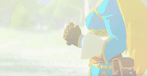 « Legend. Zelda isn't wearing pink.
