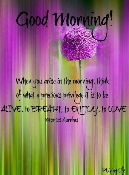 Good morning quote via Living Life at www.Facebook.com/KimmberlyFox.39