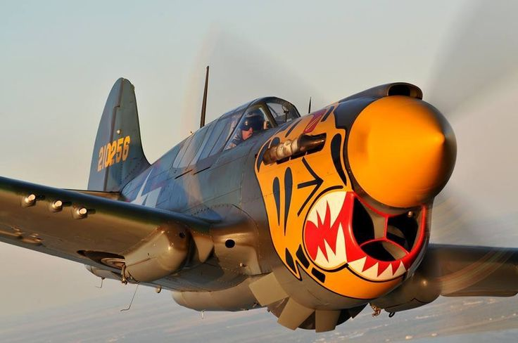 P-40: