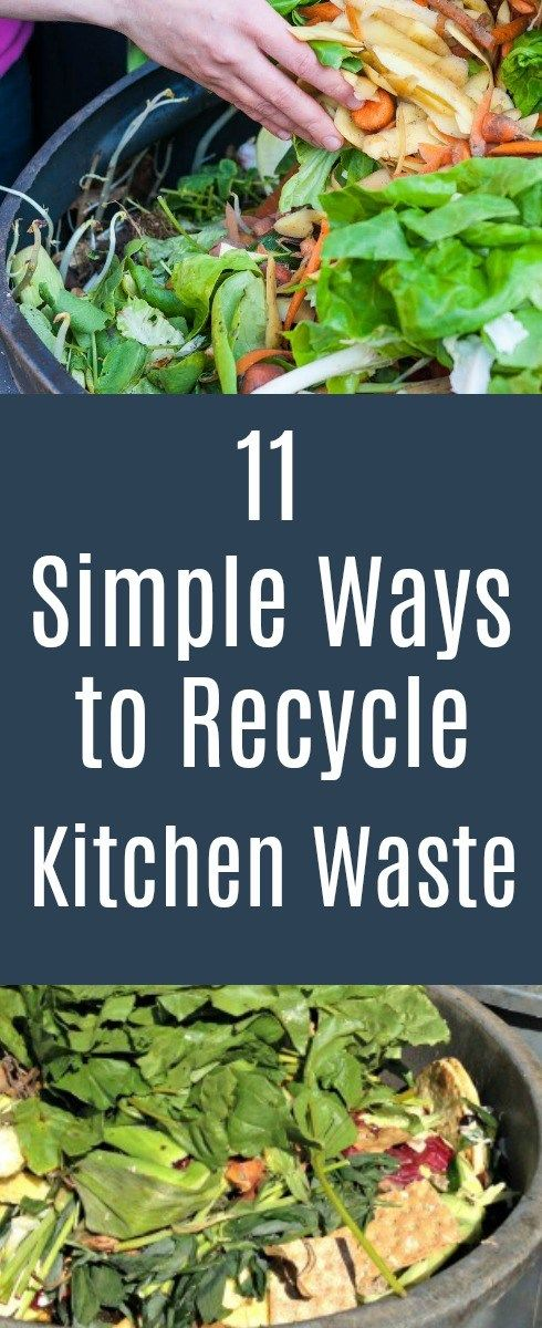 11 ways to recycle your organic kitchen waste. Go Green!
