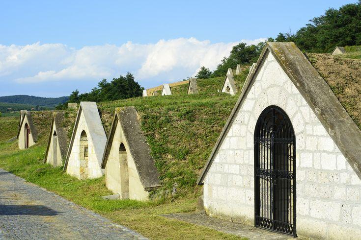 Kalandozások Tokaj-Hegyalja történelmi borvidékén - Szallas.hu Blog
