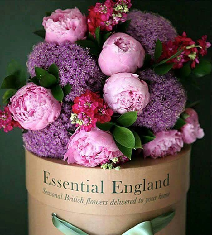 Wedding Flowers In May: 36 Best Best Flowers For May Weddings Images On Pinterest