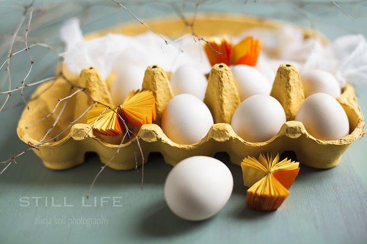 Spring | Still Life StudioStill Life Studio