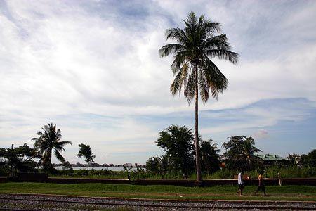 背の高い暖かな土地の樹が、風に靡いている。ボンコック湖の畔、ゆっくりと歩く人。2004/9 カンボジア王立鉄道 Royal Railways of Cambodia プノンペン駅 Phnom Penh Station(カンボジア王国 Kingdom of Cambodia)© 2010 風旅記(M.M.) 風旅記以外への転載はできません...