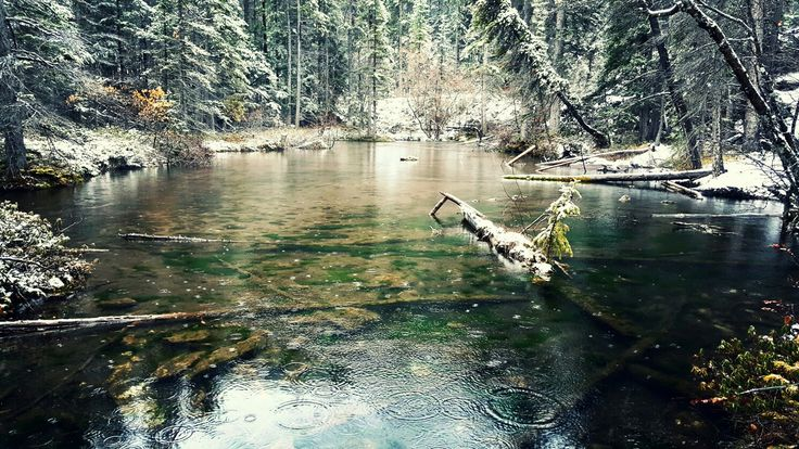 Grassi Lakes Hike  Canmore, AB  Oct 14/16  #hike #photography #nature #mountains #alberta #canada