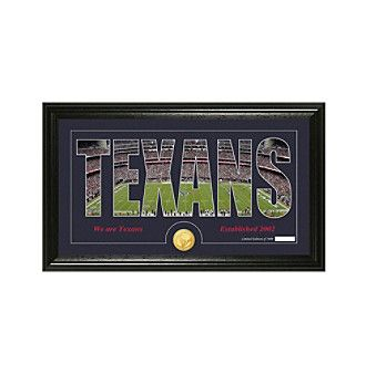 """NFL® Houston Texans """"Silhouette"""" Bronze Coin Panoramic Photo Mint"""
