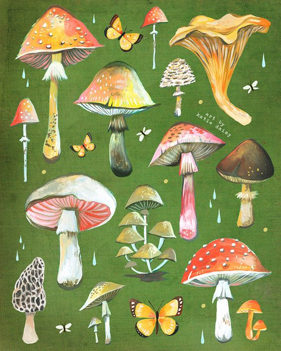 Mushroom Chart Print