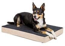 Matelas à mémoire de forme pour #chien.  http://www.animaleco.com/catalogue/chien/paniers-chien/coussins-et-tapis-chien/matelas-memoire-forme-80x50-cm