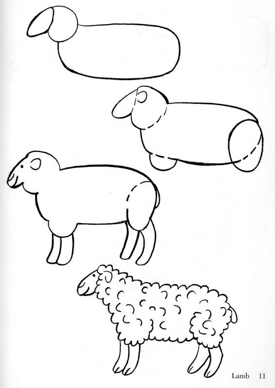 Como dibujar animales fácilmente