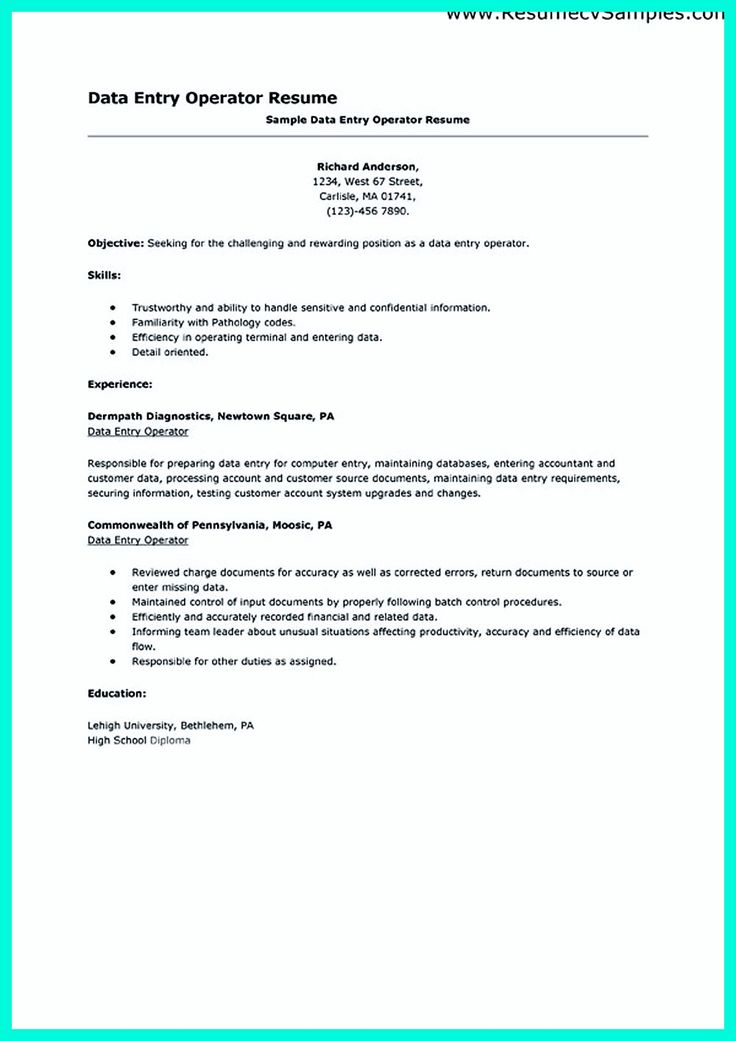 2695 best Resume Sample Template And Format images on Pinterest - data entry resume sample