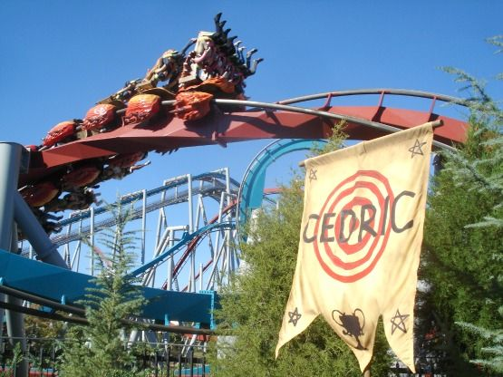 Roller Coaster at Islands of Adventure - Universal Studios Florida