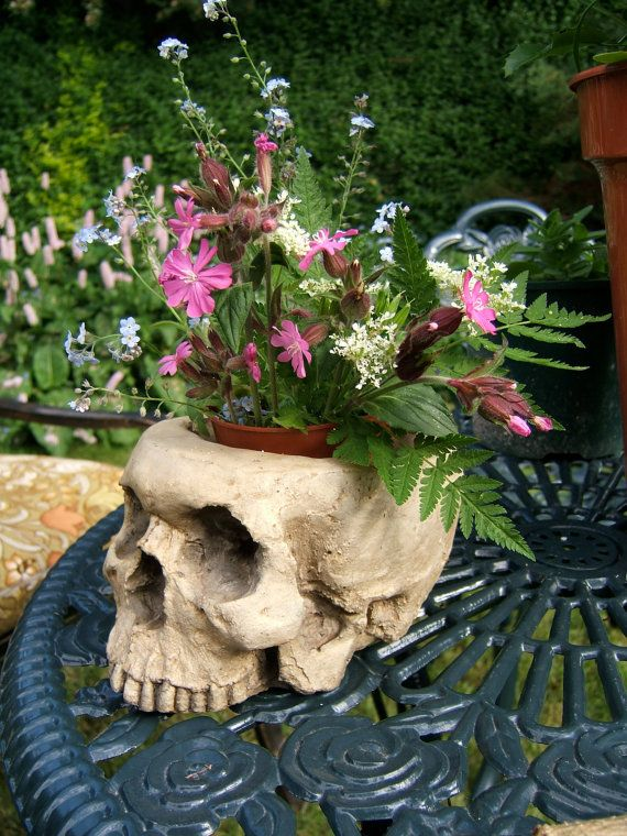 HUMAN SKULL PLANTER full size human skull by VICIOUSNOODLES, £22.00