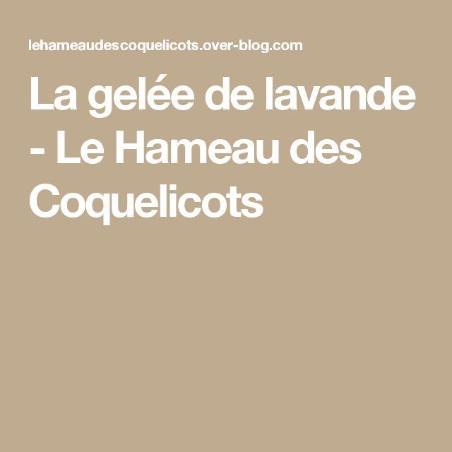 La gelée de lavande - Le Hameau des Coquelicots