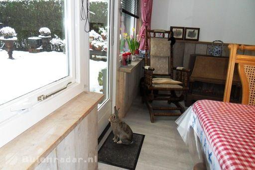 natte sneeuw                Rabbit Charlie-Epke