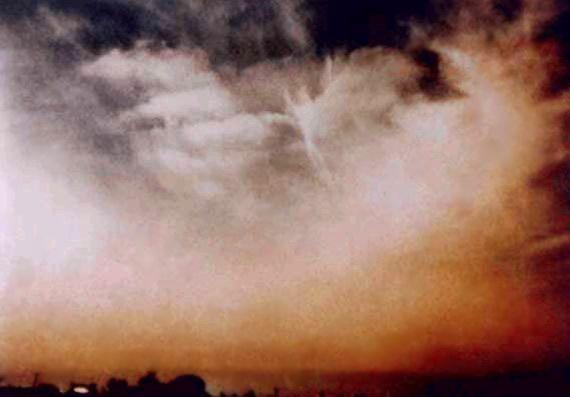Увлекательное занятие - смотреть в небо, особенно когда по нему проплывают облака. Столько образов можно увидеть, столько историй придумать, да и просто расслабиться и насладиться небесной красотой. Присмотревшись, на каждой из фотографий можно увидеть ангелов в том или ином виде. Это хороший знак!)            Наши домашние любимцы нуждаются также как и мы в профилактических мерах для поддержания здоровья.Ультразвуковая чистка зубов у собак- необходимое мероприятие, причем производить его…