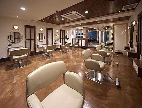 Color schemes for hair salons attachment modern pullir for Beauty salon designs for interior