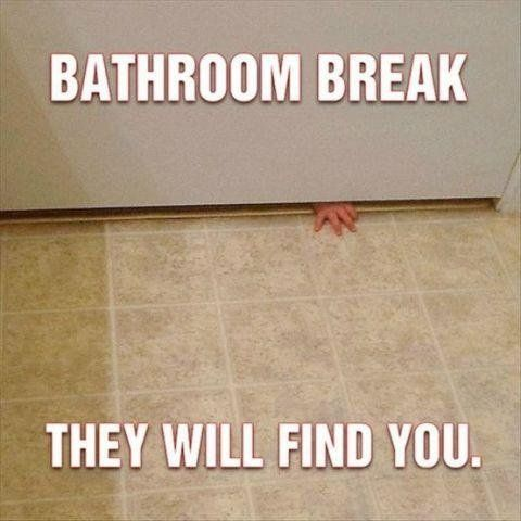 Bathroom break, they WILL find you!                                                                                                                                                     More