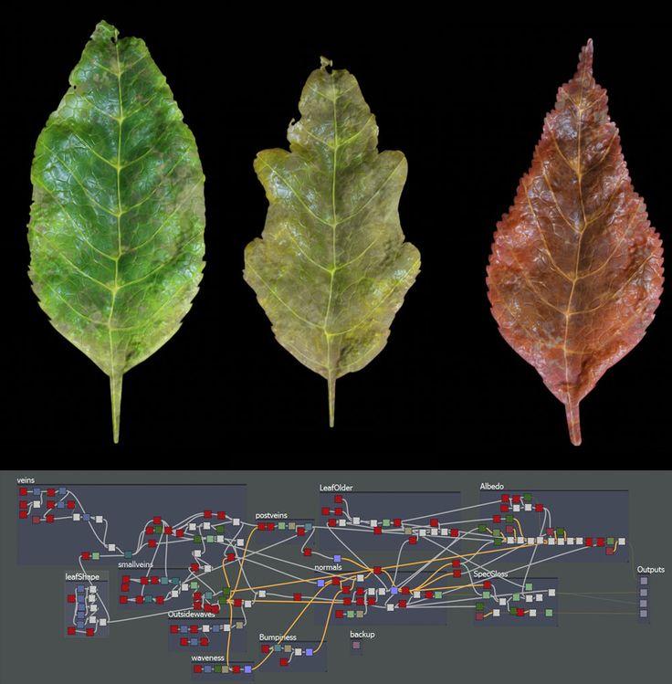 Procedural leaves - Substance Designer, Hugo Beyer on ArtStation at https://www.artstation.com/artwork/procedural-leaves-substance-designer