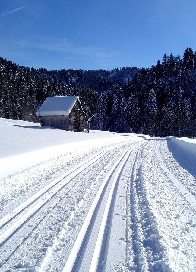 Piste de ski de fond dans le Jura