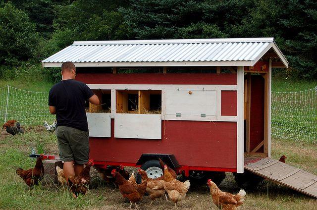 Love The Coop Built On A Trailer Hens Pinterest