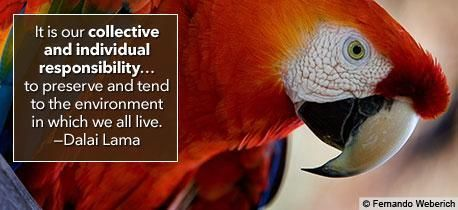 Image detail for -Human Rights and the Environment - Quotes - Human Rights Photo ...