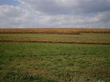 Farmland For Sale  125 Acres Valley Land Hunting Trout Stream Farmland in Pennsylvania,