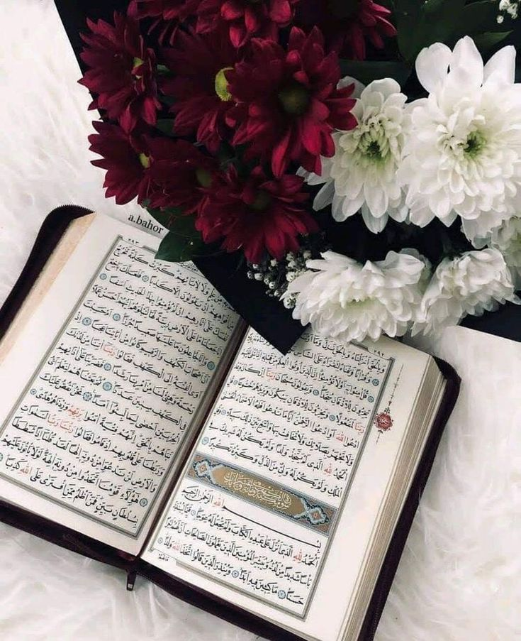 Pin By ꪑꪮⅈꪀ ડ 𝕥ꫝⅈꪀ𝕜ⅈꪀᧁ On Q U R A N In 2020 Quran Book Blessed Friday Quran Sharif