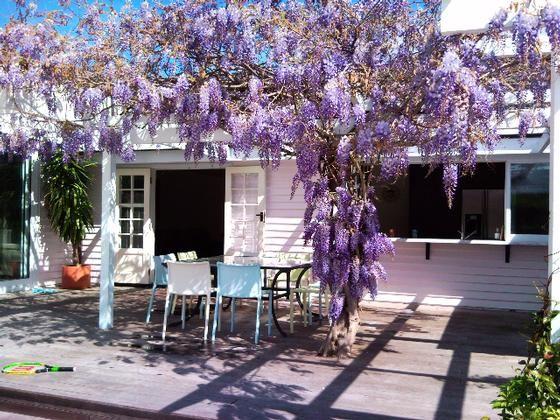 Luxurious Martinborough Lodge in Martinborough, Wairarapa | Bookabach