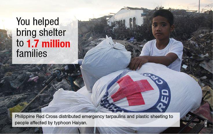 typhoon haiyan : 3 months on
