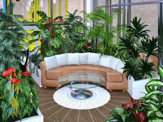 Зимний сад - райский уголок в доме (часть III).