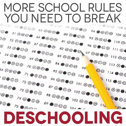 Do you think that kids need testing in order to determine how they are doing academically? Break this school rule of testing, and you might just discover that you gain a much more intimate knowledge of your child's progress!